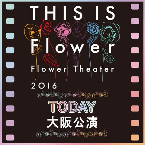 flower1130