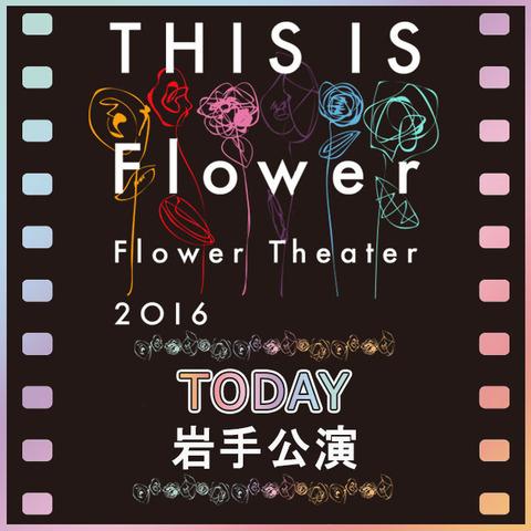 flower_cowntdown_iwate