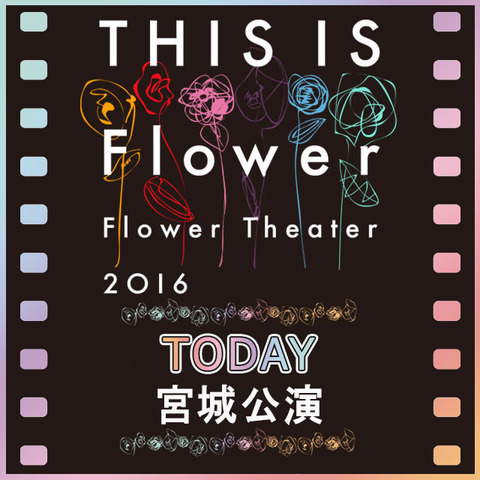 flower_cowntdown_miyagi